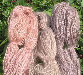 Teeswater Wool Dyed
